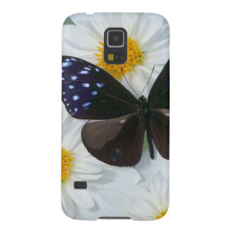 Sammamish Washington Photograph of Butterfly 33 Galaxy S5 Case