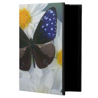 Sammamish Washington Photograph of Butterfly 33 iPad Air Cover