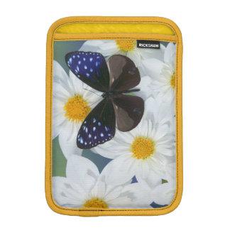 Sammamish Washington Photograph of Butterfly 33 iPad Mini Sleeve