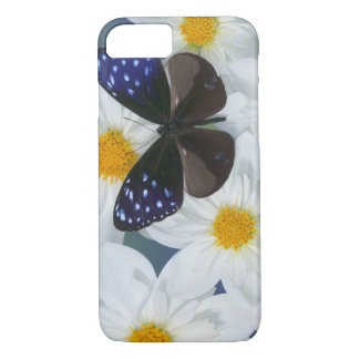 Sammamish Washington Photograph of Butterfly 33 iPhone 8/7 Case