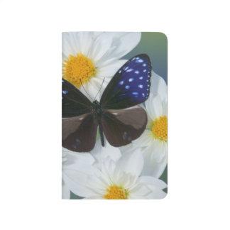 Sammamish Washington Photograph of Butterfly 33 Journal