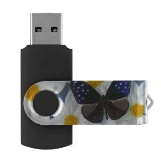 Sammamish Washington Photograph of Butterfly 33 Swivel USB 2.0 Flash Drive