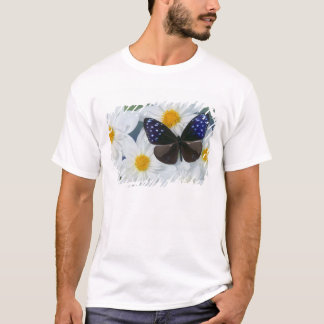 Sammamish Washington Photograph of Butterfly 33 T-Shirt