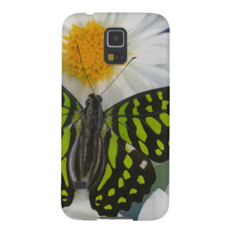 Sammamish Washington Photograph of Butterfly 36 Galaxy S5 Cases