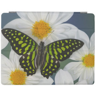 Sammamish Washington Photograph of Butterfly 36 iPad Cover