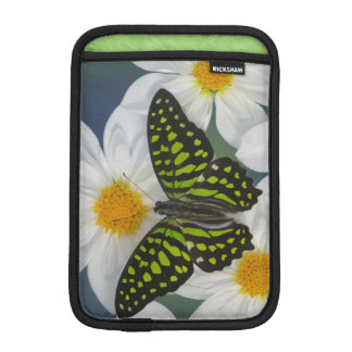 Sammamish Washington Photograph of Butterfly 36 iPad Mini Sleeve