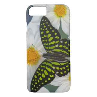 Sammamish Washington Photograph of Butterfly 36 iPhone 8/7 Case