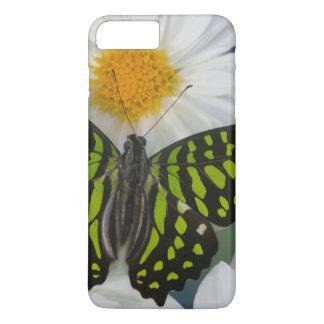 Sammamish Washington Photograph of Butterfly 36 iPhone 8 Plus/7 Plus Case
