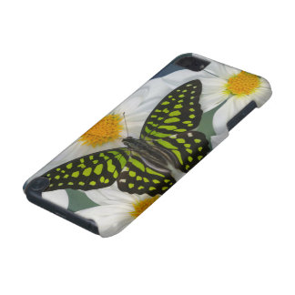 Sammamish Washington Photograph of Butterfly 36 iPod Touch (5th Generation) Cases