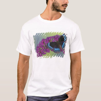 Sammamish Washington Photograph of Butterfly 38 T-Shirt