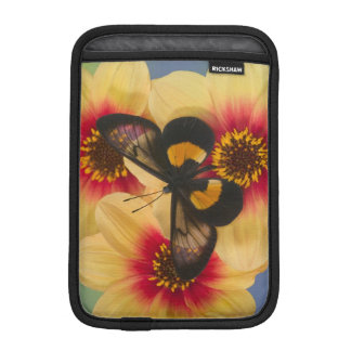 Sammamish Washington Photograph of Butterfly 39 iPad Mini Sleeve