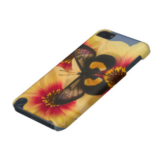 Sammamish Washington Photograph of Butterfly 39 iPod Touch (5th Generation) Cover