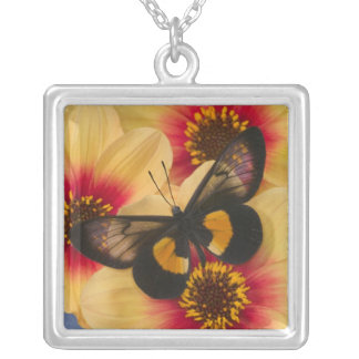 Sammamish Washington Photograph of Butterfly 39 Silver Plated Necklace