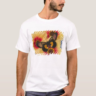 Sammamish Washington Photograph of Butterfly 39 T-Shirt