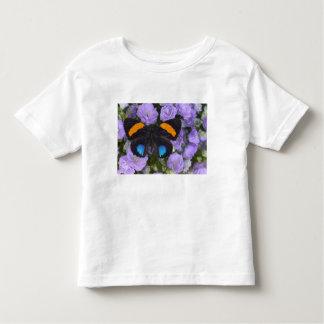 Sammamish Washington Photograph of Butterfly 3 Toddler T-Shirt