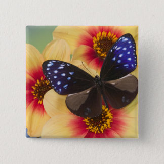 Sammamish Washington Photograph of Butterfly 40 15 Cm Square Badge