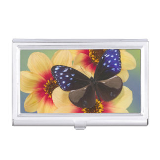 Sammamish Washington Photograph of Butterfly 40 Business Card Holder