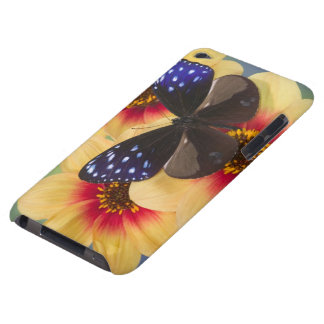 Sammamish Washington Photograph of Butterfly 40 iPod Touch Case
