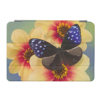 Sammamish Washington Photograph of Butterfly 40 iPad Mini Cover