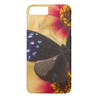 Sammamish Washington Photograph of Butterfly 40 iPhone 8 Plus/7 Plus Case