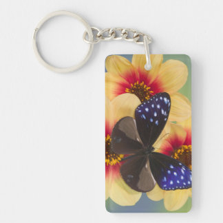 Sammamish Washington Photograph of Butterfly 40 Key Ring