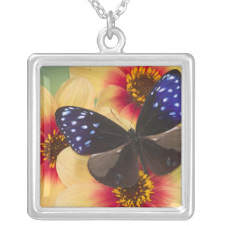 Sammamish Washington Photograph of Butterfly 40 Silver Plated Necklace