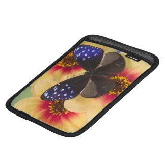 Sammamish Washington Photograph of Butterfly 40 Sleeve For iPad Mini
