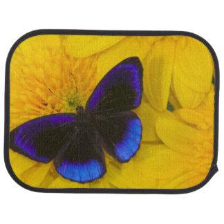 Sammamish Washington Photograph of Butterfly 41 Car Mat