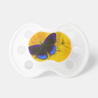 Sammamish Washington Photograph of Butterfly 41 Dummy
