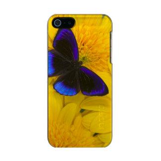 Sammamish Washington Photograph of Butterfly 41 Incipio Feather® Shine iPhone 5 Case