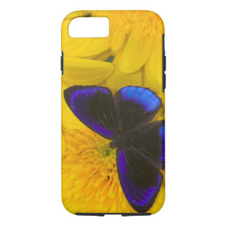 Sammamish Washington Photograph of Butterfly 41 iPhone 8/7 Case