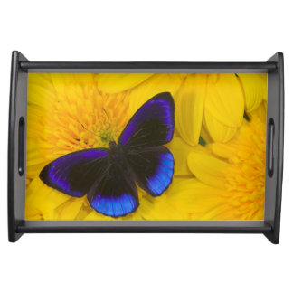 Sammamish Washington Photograph of Butterfly 41 Serving Tray