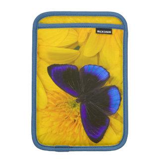 Sammamish Washington Photograph of Butterfly 41 Sleeve For iPad Mini