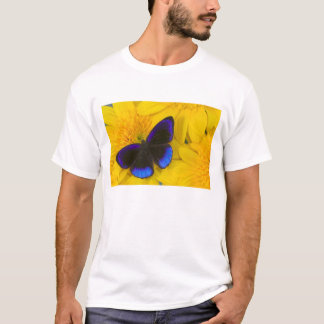 Sammamish Washington Photograph of Butterfly 41 T-Shirt
