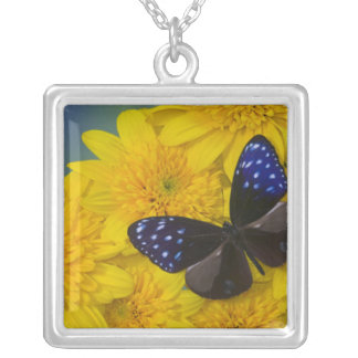 Sammamish Washington Photograph of Butterfly 42 Silver Plated Necklace