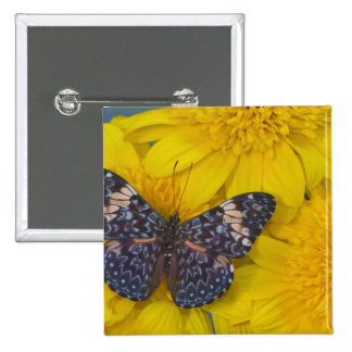 Sammamish Washington Photograph of Butterfly 43 15 Cm Square Badge