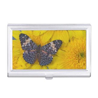 Sammamish Washington Photograph of Butterfly 43 Business Card Holder