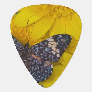 Sammamish Washington Photograph of Butterfly 43 Guitar Pick