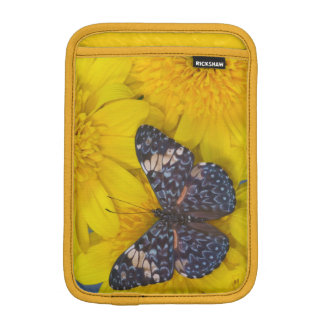 Sammamish Washington Photograph of Butterfly 43 iPad Mini Sleeve