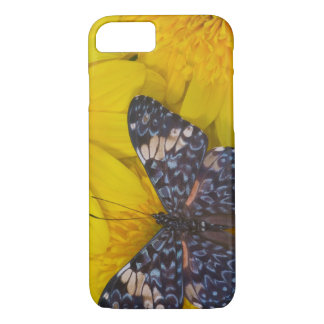 Sammamish Washington Photograph of Butterfly 43 iPhone 8/7 Case