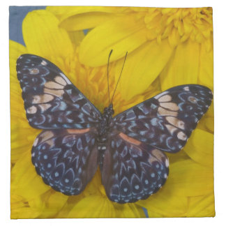 Sammamish Washington Photograph of Butterfly 43 Napkin
