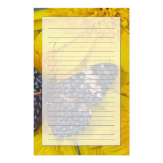Sammamish Washington Photograph of Butterfly 43 Personalised Stationery