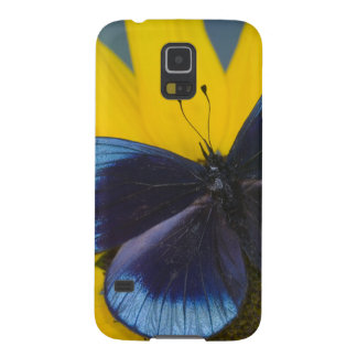 Sammamish Washington Photograph of Butterfly 44 Galaxy S5 Cases