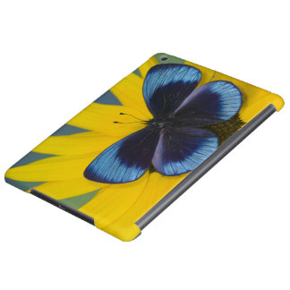 Sammamish Washington Photograph of Butterfly 44 iPad Air Cover