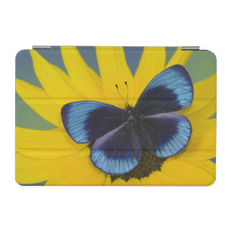 Sammamish Washington Photograph of Butterfly 44 iPad Mini Cover