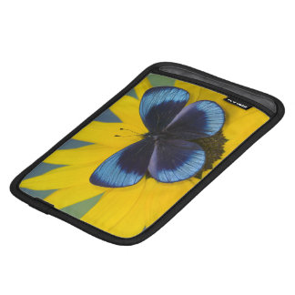 Sammamish Washington Photograph of Butterfly 44 iPad Mini Sleeves