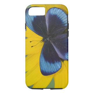 Sammamish Washington Photograph of Butterfly 44 iPhone 8/7 Case
