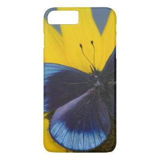 Sammamish Washington Photograph of Butterfly 44 iPhone 8 Plus/7 Plus Case