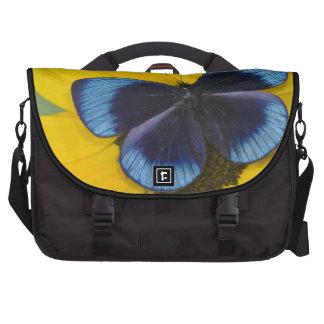 Sammamish Washington Photograph of Butterfly 44 Laptop Messenger Bag