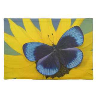 Sammamish Washington Photograph of Butterfly 44 Placemat